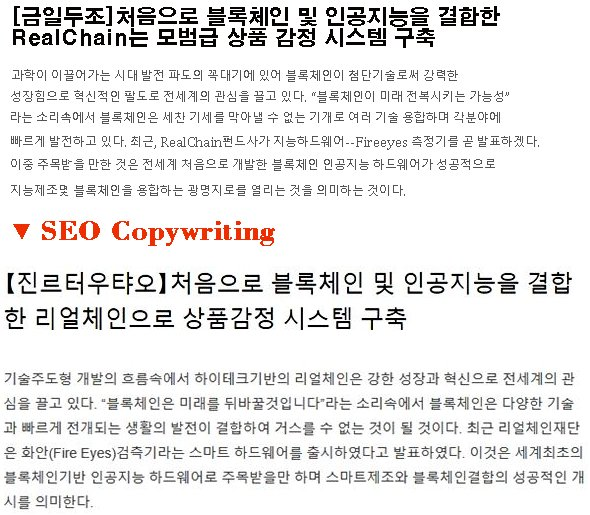 SEO Copywriting Case